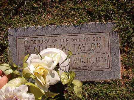 TAYLOR, MICHAEL W - Pulaski County, Arkansas | MICHAEL W TAYLOR - Arkansas Gravestone Photos