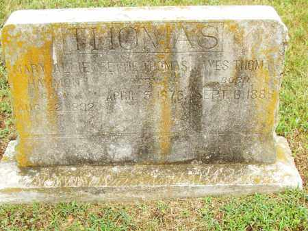 THOMAS, MARY ALLIE - Pulaski County, Arkansas | MARY ALLIE THOMAS - Arkansas Gravestone Photos