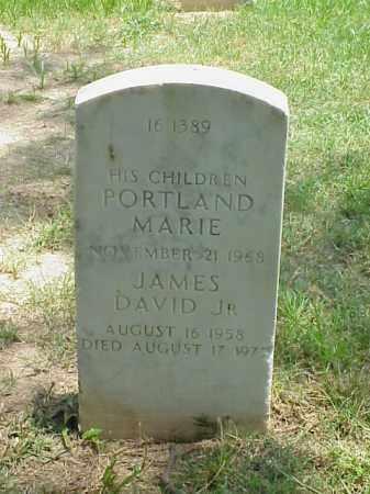 TIPTON, PORTLAND MARIE - Pulaski County, Arkansas | PORTLAND MARIE TIPTON - Arkansas Gravestone Photos