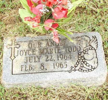 TODD, JOYCE MARIE - Pulaski County, Arkansas | JOYCE MARIE TODD - Arkansas Gravestone Photos