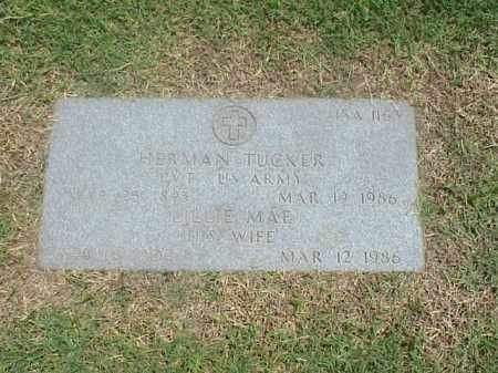 TUCKER (VETERAN WWI), HERMAN - Pulaski County, Arkansas | HERMAN TUCKER (VETERAN WWI) - Arkansas Gravestone Photos