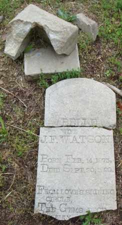 WATSON, BELLE - Pulaski County, Arkansas | BELLE WATSON - Arkansas Gravestone Photos