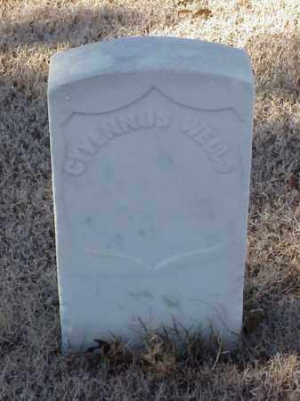 WELLS (VETERAN UNION), CYVENNUS - Pulaski County, Arkansas | CYVENNUS WELLS (VETERAN UNION) - Arkansas Gravestone Photos