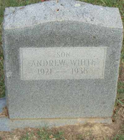 WHITE, ANDREW - Pulaski County, Arkansas | ANDREW WHITE - Arkansas Gravestone Photos