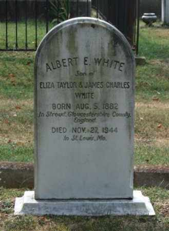 WHITE, ALBERT E. - Pulaski County, Arkansas | ALBERT E. WHITE - Arkansas Gravestone Photos