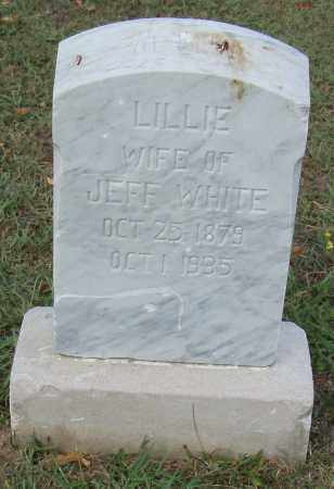 WHITE, LILLIE - Pulaski County, Arkansas | LILLIE WHITE - Arkansas Gravestone Photos