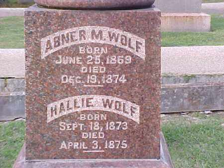 WOLF, HALLIE - Pulaski County, Arkansas | HALLIE WOLF - Arkansas Gravestone Photos