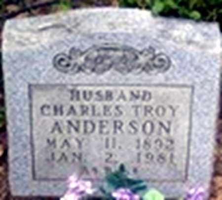 ANDERSON, CHARLES TROY - Randolph County, Arkansas | CHARLES TROY ANDERSON - Arkansas Gravestone Photos