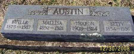 SPIKES AUSTIN, MALLISA - Randolph County, Arkansas | MALLISA SPIKES AUSTIN - Arkansas Gravestone Photos