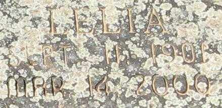 BLACKSHEAR, LELIA - Randolph County, Arkansas   LELIA BLACKSHEAR - Arkansas Gravestone Photos