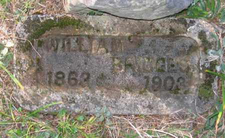 BRIDGES, WILLIAM - Randolph County, Arkansas | WILLIAM BRIDGES - Arkansas Gravestone Photos