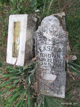 MOCK BROWN, EASTER ROENIA - Randolph County, Arkansas | EASTER ROENIA MOCK BROWN - Arkansas Gravestone Photos