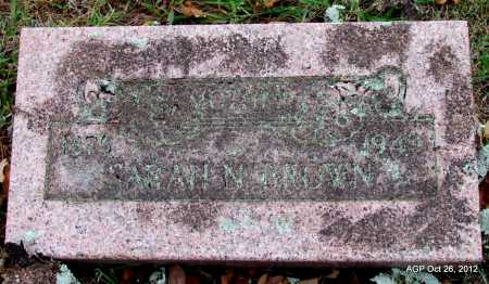 BROWN, SARAH N - Randolph County, Arkansas | SARAH N BROWN - Arkansas Gravestone Photos