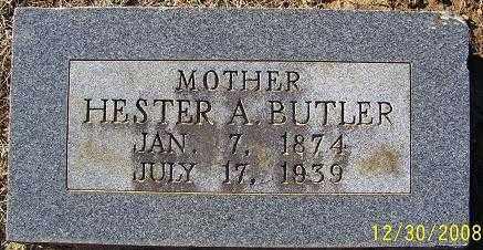 BUTLER, HESTER A. - Randolph County, Arkansas | HESTER A. BUTLER - Arkansas Gravestone Photos