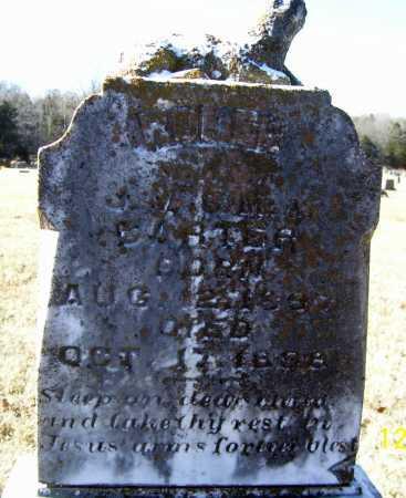 CARTER, HOMER - Randolph County, Arkansas | HOMER CARTER - Arkansas Gravestone Photos