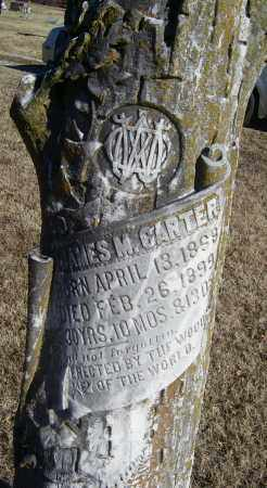CARTER, JAMES M. - Randolph County, Arkansas | JAMES M. CARTER - Arkansas Gravestone Photos