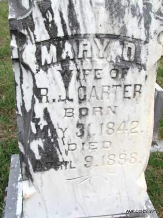 CARTER, MARY D - Randolph County, Arkansas | MARY D CARTER - Arkansas Gravestone Photos