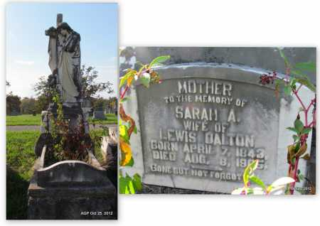 DALTON, SARAH ANN - Randolph County, Arkansas | SARAH ANN DALTON - Arkansas Gravestone Photos