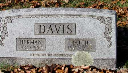 DAVIS, HERMAN - Randolph County, Arkansas | HERMAN DAVIS - Arkansas Gravestone Photos