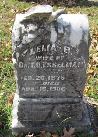 HAMIL ESSELMAN, LELIA - Randolph County, Arkansas | LELIA HAMIL ESSELMAN - Arkansas Gravestone Photos