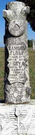 ANDERSON FLUKE, ABBY REBECCA - Randolph County, Arkansas | ABBY REBECCA ANDERSON FLUKE - Arkansas Gravestone Photos