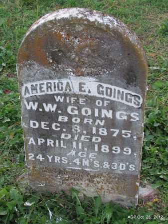 JACKSON GOINGS, AMERICA E - Randolph County, Arkansas | AMERICA E JACKSON GOINGS - Arkansas Gravestone Photos