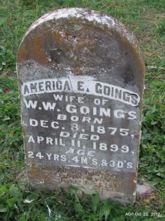GOINGS, AMERICA E - Randolph County, Arkansas | AMERICA E GOINGS - Arkansas Gravestone Photos