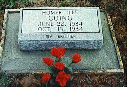 GOING, HOMER LEE - Randolph County, Arkansas | HOMER LEE GOING - Arkansas Gravestone Photos