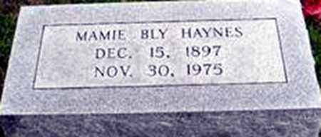 BLY HAYNES, MAMIE LUCILLE - Randolph County, Arkansas | MAMIE LUCILLE BLY HAYNES - Arkansas Gravestone Photos
