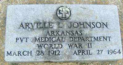 JOHNSON, ARVILLE L - Randolph County, Arkansas | ARVILLE L JOHNSON - Arkansas Gravestone Photos