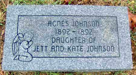 JOHNSON, AGNES - Randolph County, Arkansas | AGNES JOHNSON - Arkansas Gravestone Photos