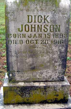 JOHNSON, DICK - Randolph County, Arkansas | DICK JOHNSON - Arkansas Gravestone Photos