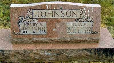 JOHNSON, HENRY MALCOM - Randolph County, Arkansas | HENRY MALCOM JOHNSON - Arkansas Gravestone Photos