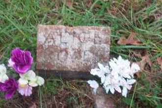 JONES, ALICE - Randolph County, Arkansas | ALICE JONES - Arkansas Gravestone Photos