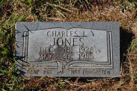 JONES, CHARLES L. - Randolph County, Arkansas | CHARLES L. JONES - Arkansas Gravestone Photos