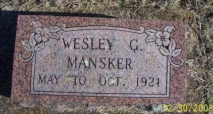 MANSKER, WESLEY G. - Randolph County, Arkansas | WESLEY G. MANSKER - Arkansas Gravestone Photos