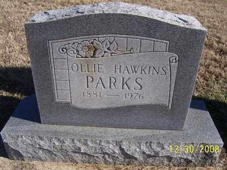 PARKS, OLLIE - Randolph County, Arkansas | OLLIE PARKS - Arkansas Gravestone Photos