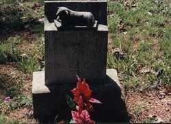 PENN, JASPER  B - Randolph County, Arkansas | JASPER  B PENN - Arkansas Gravestone Photos
