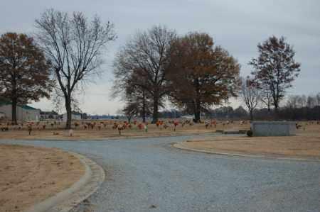 *RANDOLPH MEMORIAL GARDENS, OVERVIEW (2) - Randolph County, Arkansas   OVERVIEW (2) *RANDOLPH MEMORIAL GARDENS - Arkansas Gravestone Photos