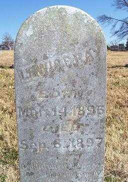 RAY, LEWIS E. - Randolph County, Arkansas | LEWIS E. RAY - Arkansas Gravestone Photos