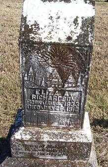 RICHARDSON, ELIZA A. - Randolph County, Arkansas | ELIZA A. RICHARDSON - Arkansas Gravestone Photos