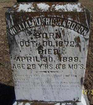 RICHARDSON, WILLIAM J. - Randolph County, Arkansas | WILLIAM J. RICHARDSON - Arkansas Gravestone Photos