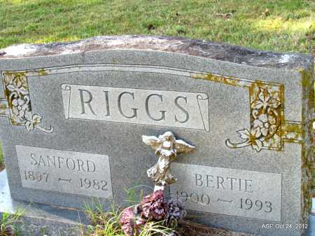 RIGGS, SANFORD - Randolph County, Arkansas | SANFORD RIGGS - Arkansas Gravestone Photos