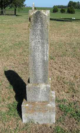 SHELTON, M. F. - Randolph County, Arkansas | M. F. SHELTON - Arkansas Gravestone Photos
