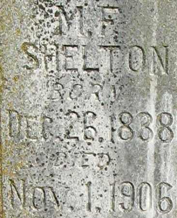 SHELTON, M F (CLOSE UP) - Randolph County, Arkansas | M F (CLOSE UP) SHELTON - Arkansas Gravestone Photos