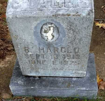 STAGGS, B HAROLD - Randolph County, Arkansas | B HAROLD STAGGS - Arkansas Gravestone Photos