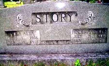 STORY, FENDER HAMMONS - Randolph County, Arkansas | FENDER HAMMONS STORY - Arkansas Gravestone Photos