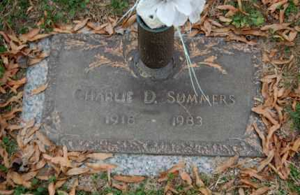 SUMMERS, CHARLIE D. - Randolph County, Arkansas | CHARLIE D. SUMMERS - Arkansas Gravestone Photos