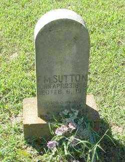 SUTTON, F. M. - Randolph County, Arkansas | F. M. SUTTON - Arkansas Gravestone Photos