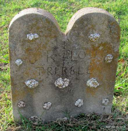 HUDSON TRIBBLE, LOU (ORIGINAL STONE) - Randolph County, Arkansas | LOU (ORIGINAL STONE) HUDSON TRIBBLE - Arkansas Gravestone Photos